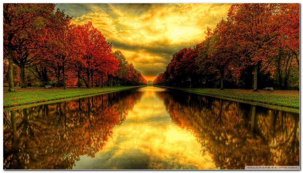 Autumn And Fall Season Nature Wallpaper Background