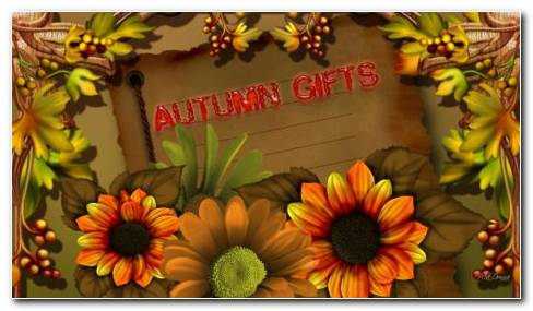 Autumn Flowers HD Wallpaper