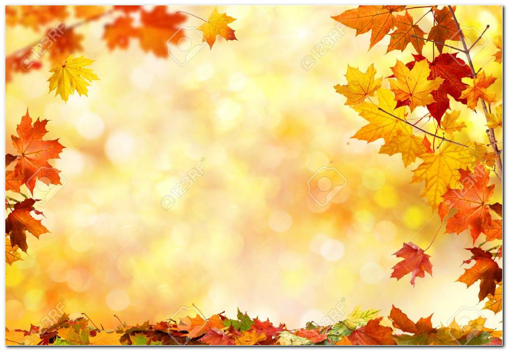 Autumn Images Background