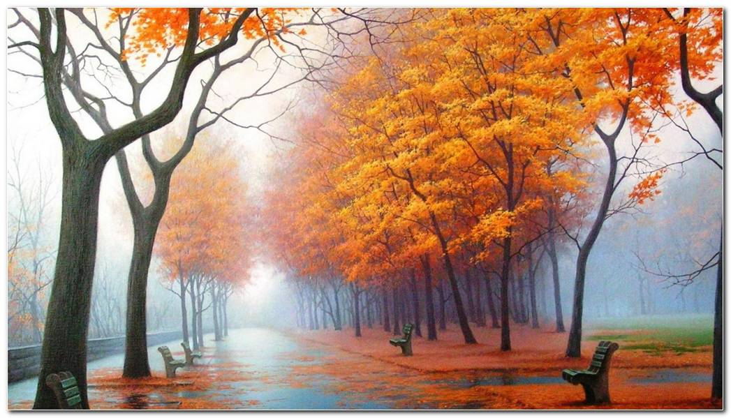Autumn Season Nature Wallpaper Background Desktop Cool