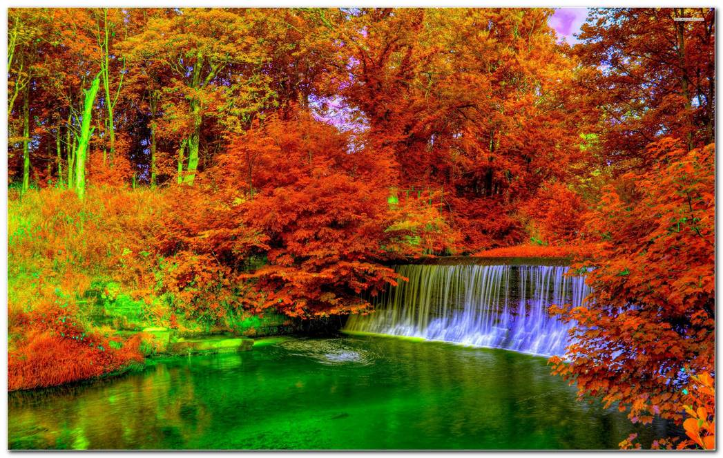 Autumn Season Nature Wallpaper Background Desktop Image