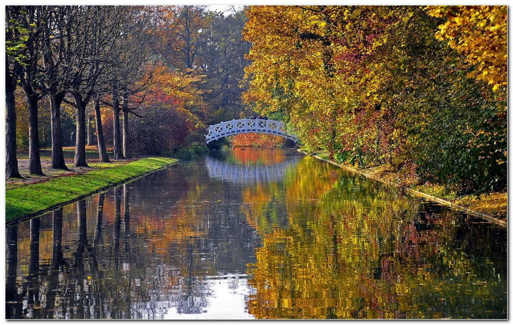 Autumn Wallpaper Bridge River