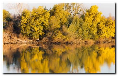 Autumn Reflection HD Wallpaper