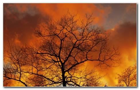 Autumn sky HD wallpaper