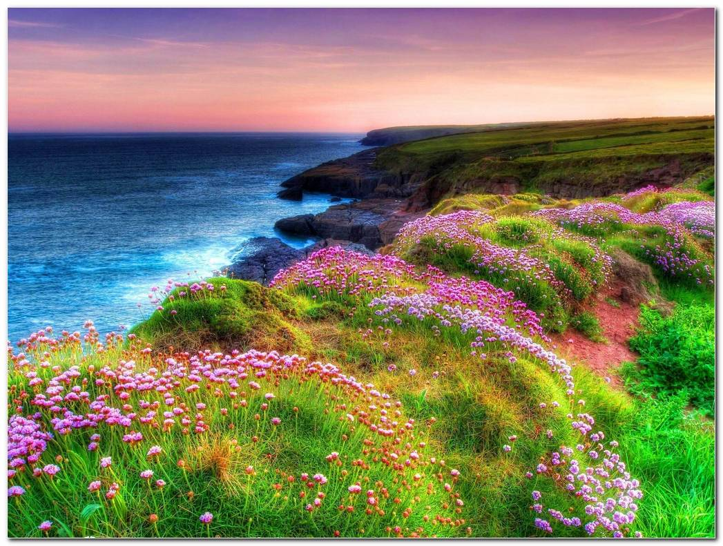 Awesome Ireland Nature Wallpaper Background Image