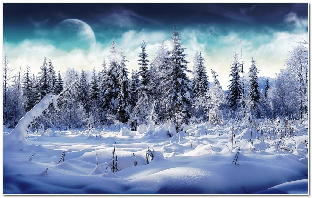 Awesome Winter Snow Nature Wallpaper Background Image