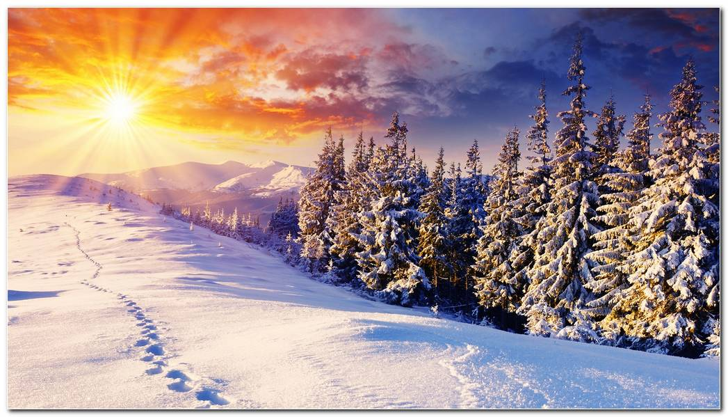 Awesome Winter Snow Nature Wallpaper Background