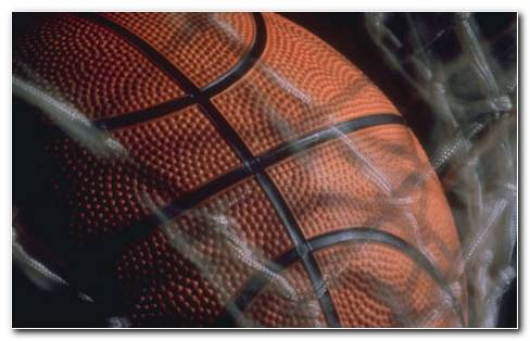 Basketball Grid HD Wallpaper