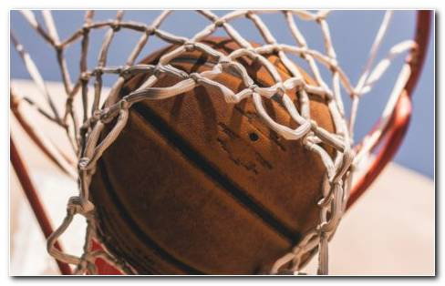 Basketball Net HD Wallpaper NEW
