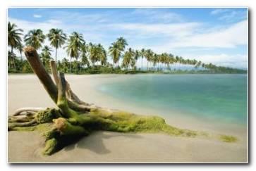 Beach Dream Wallpaper 1920x1080 340x220