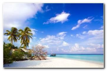 Beach Side Life Wallpaper 1680x1050 340x220