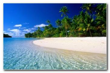 Beach Tropical Wallpaper 1365x768 340x220