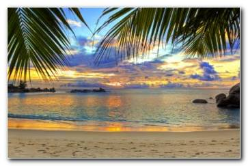 Beach Tropics Sea Wallpaper 1440x884 340x220