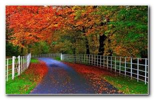 Beaty Autumn 3d Wallpaper