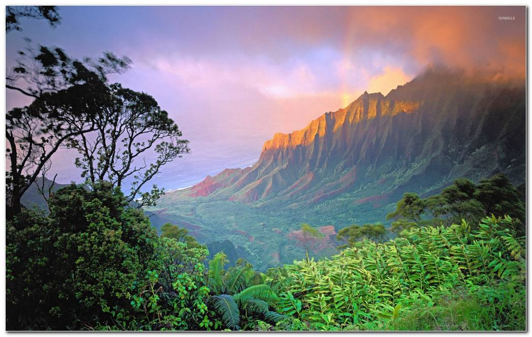 Beautiful Desktop Hawaii Wallpapers Background