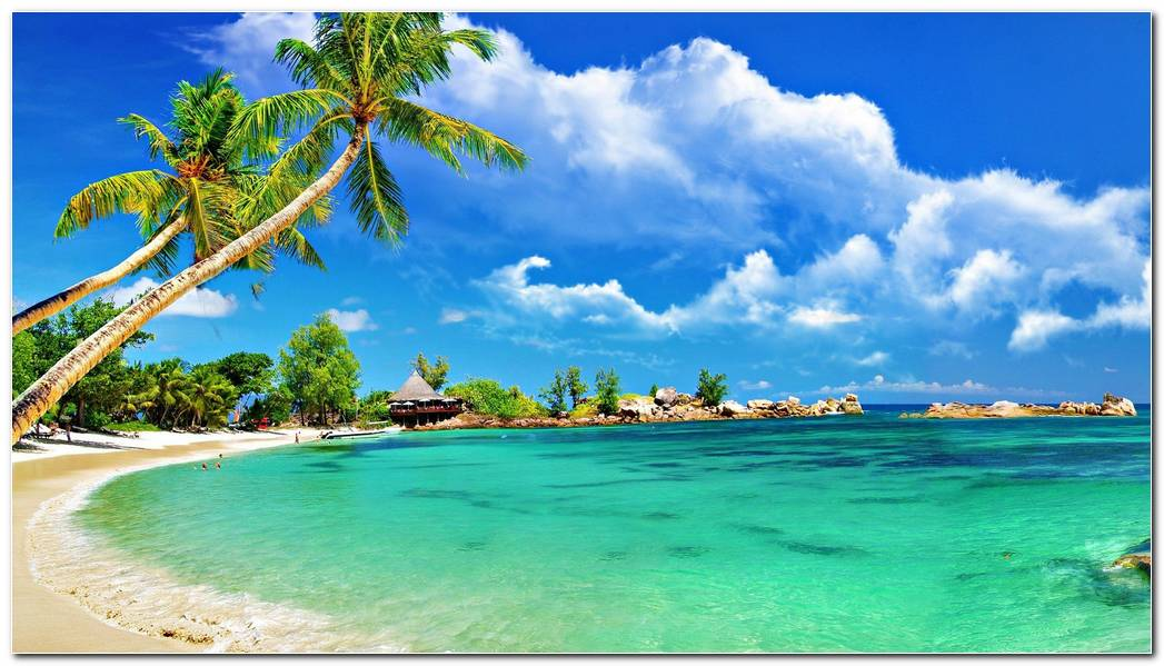 Beautiful Panorama Beach Wallpaper