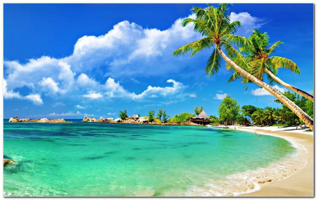 Beautiful Sea Wallpaper Background Picture Desktop
