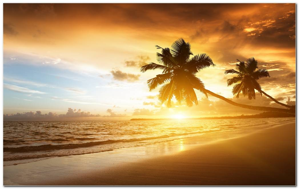 Beautiful Sunset Wallpapers Background Picture