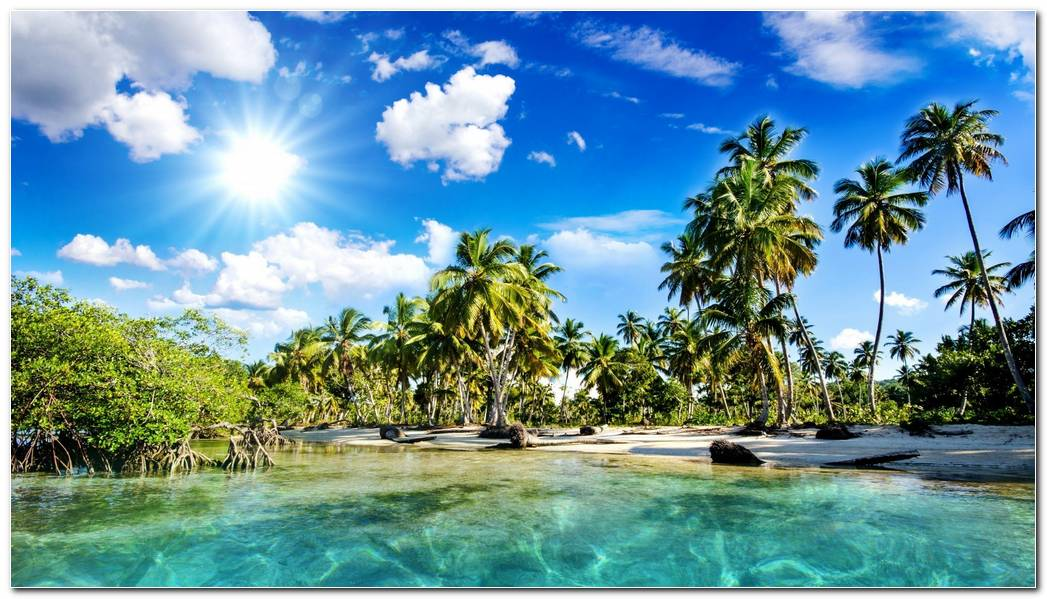Beautiful Tropical Nature Wallpaper Background Widescreen