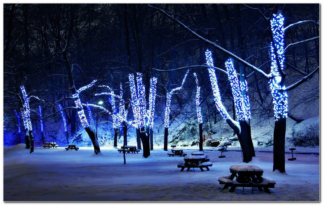 Beautiful Winter Night Image Desktop Wallpaper