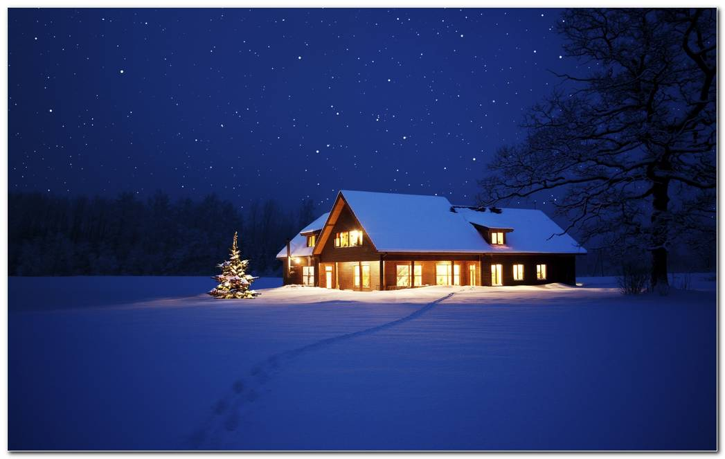 Beautiful Winter Night Nature Wallpaper Background