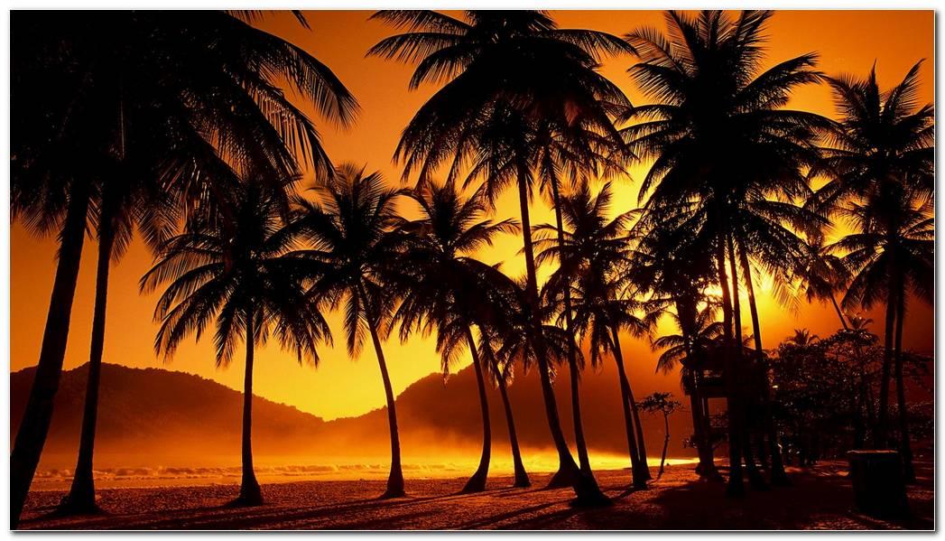 Best Beautiful Sunset Wallpaper