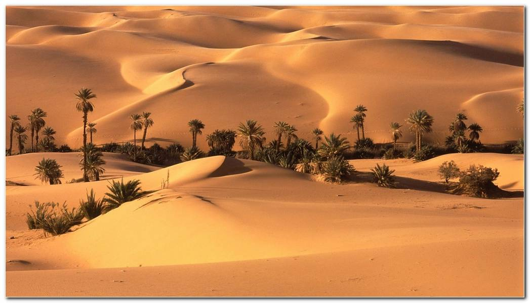 Best Desert Nature Wallpaper Background Wide