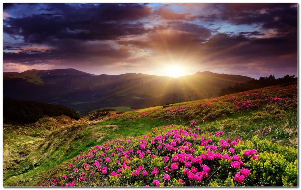 Best Sunrise Wallpapers Background Widescreen