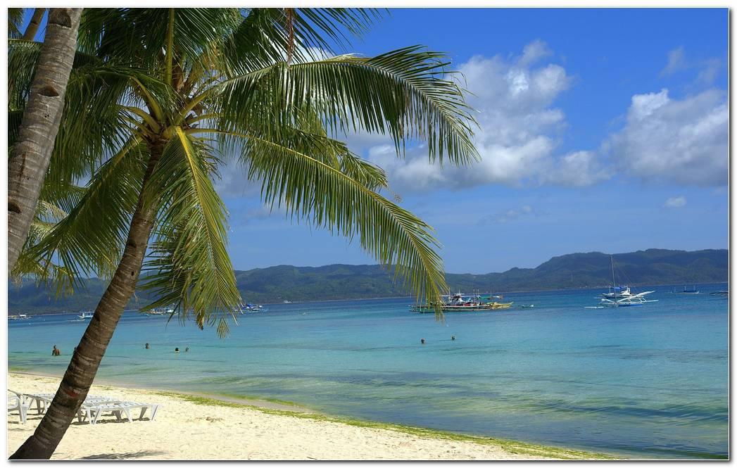 Best Tropical Beach Nature Wallpaper Background