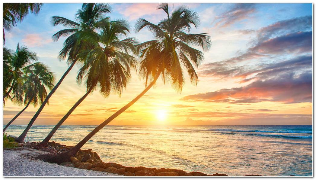Best Tropical Nature Wallpaper Background Beach Desktop