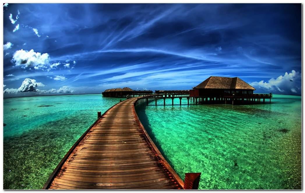 Best Tropical Nature Wallpaper Background Image Desktop
