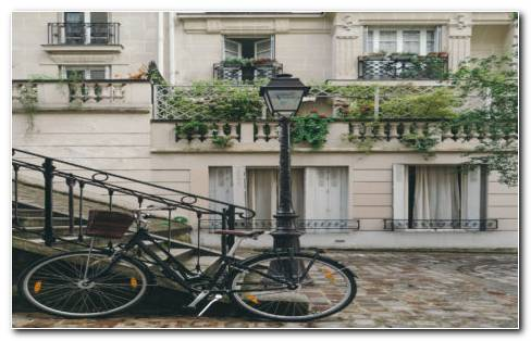 Bicycle In Facade HD Wallpaper