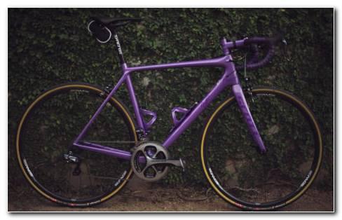 Bike Near Bushes HD Wallpaper