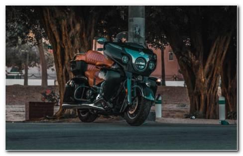 Bike Road And Trees HD Wallpaper