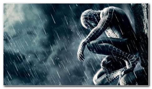 Black Spider Man HD Wallpaper