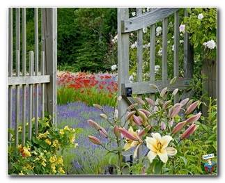 Botanical Gardens 2