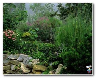 Botanical Gardens 23