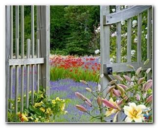 Botanical Gardens 27