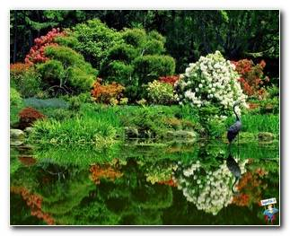 Botanical Gardens 31