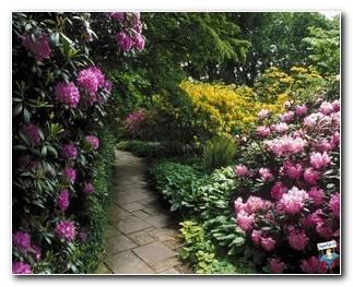 Botanical Gardens 34