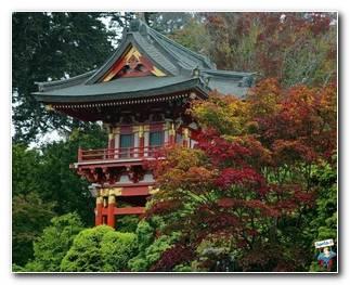 Botanical Gardens 38