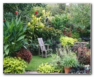 Botanical Gardens 41