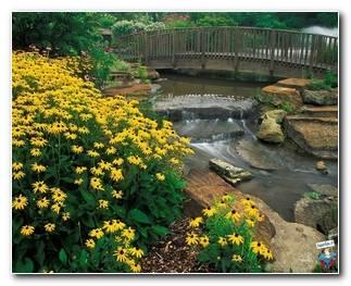 Botanical Gardens 44