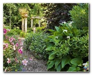 Botanical Gardens 46