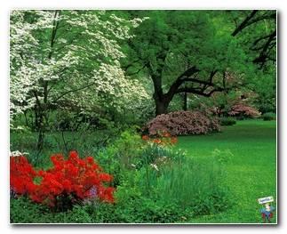 Botanical Gardens 55