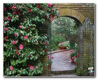 Botanical Gardens 57