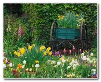 Botanical Gardens 60