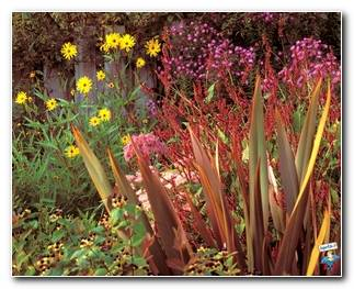 Botanical Gardens 61