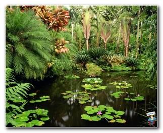 Botanical Gardens 67