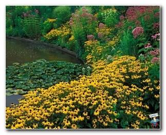 Botanical Gardens 7